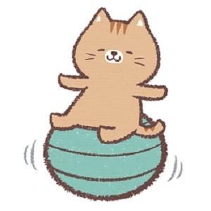 バランスボールで運動するネコ