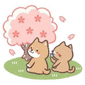 桜を眺める2人