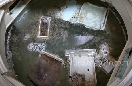 洗濯槽に浮いてきた黒カビ