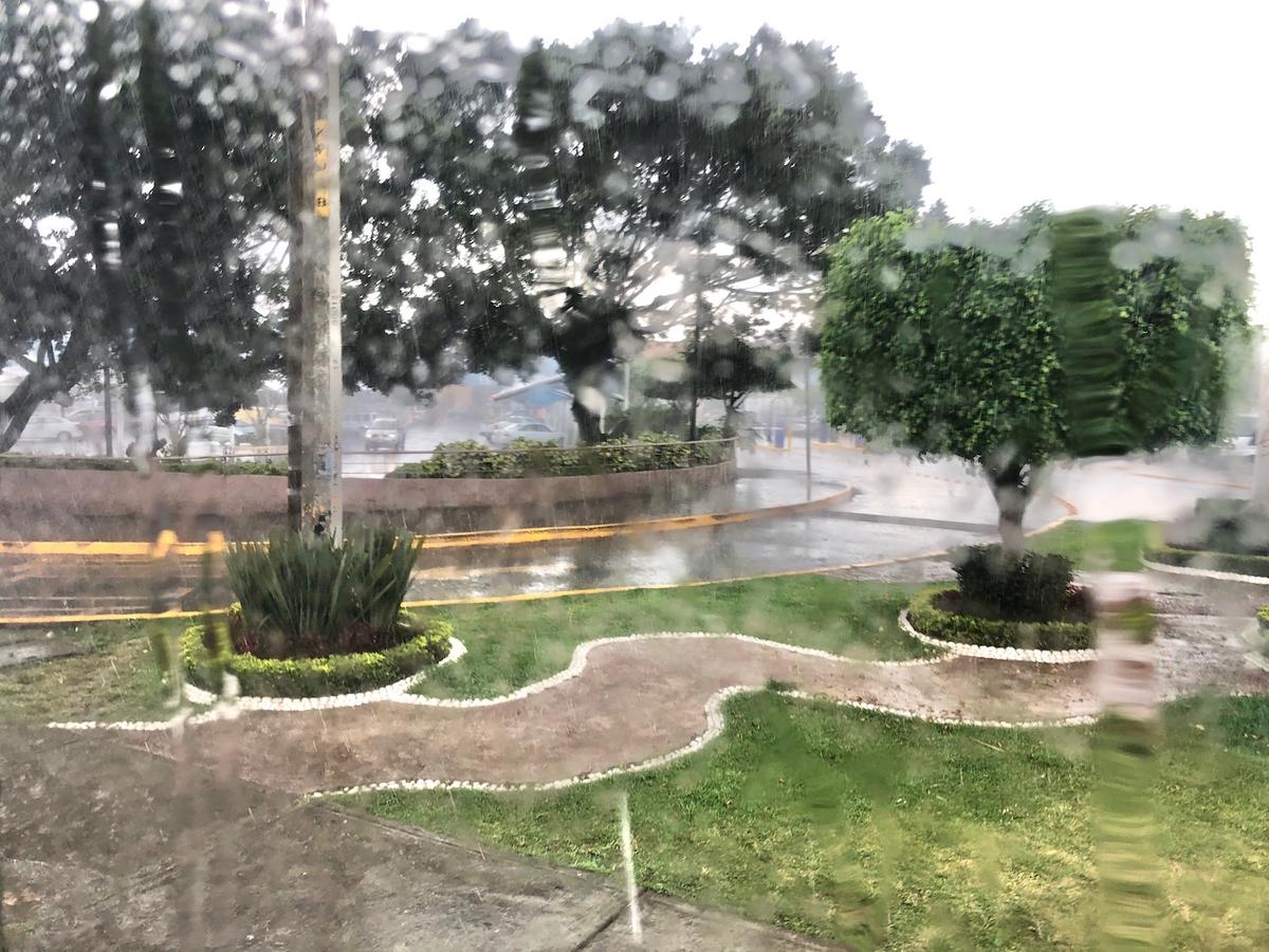 f:id:mexicoi:20191026132430j:plain