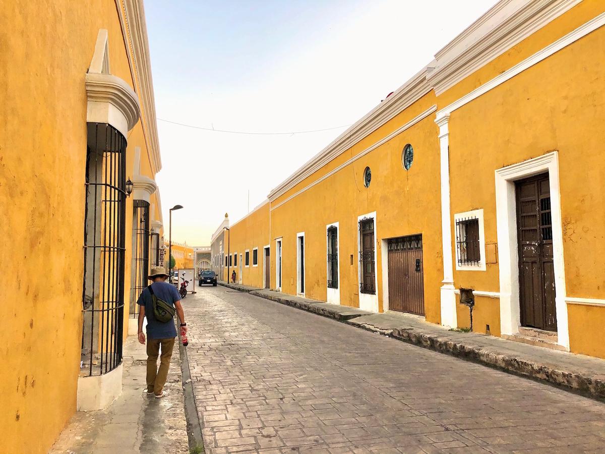 f:id:mexicoi:20191124151009j:plain