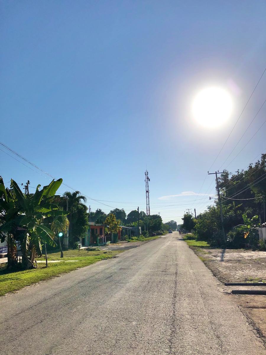 f:id:mexicoi:20191128131712j:plain