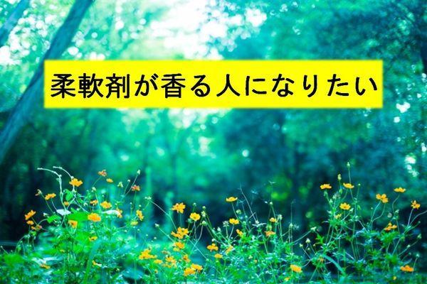 f:id:mezasuhaslowlife:20190120175650j:plain