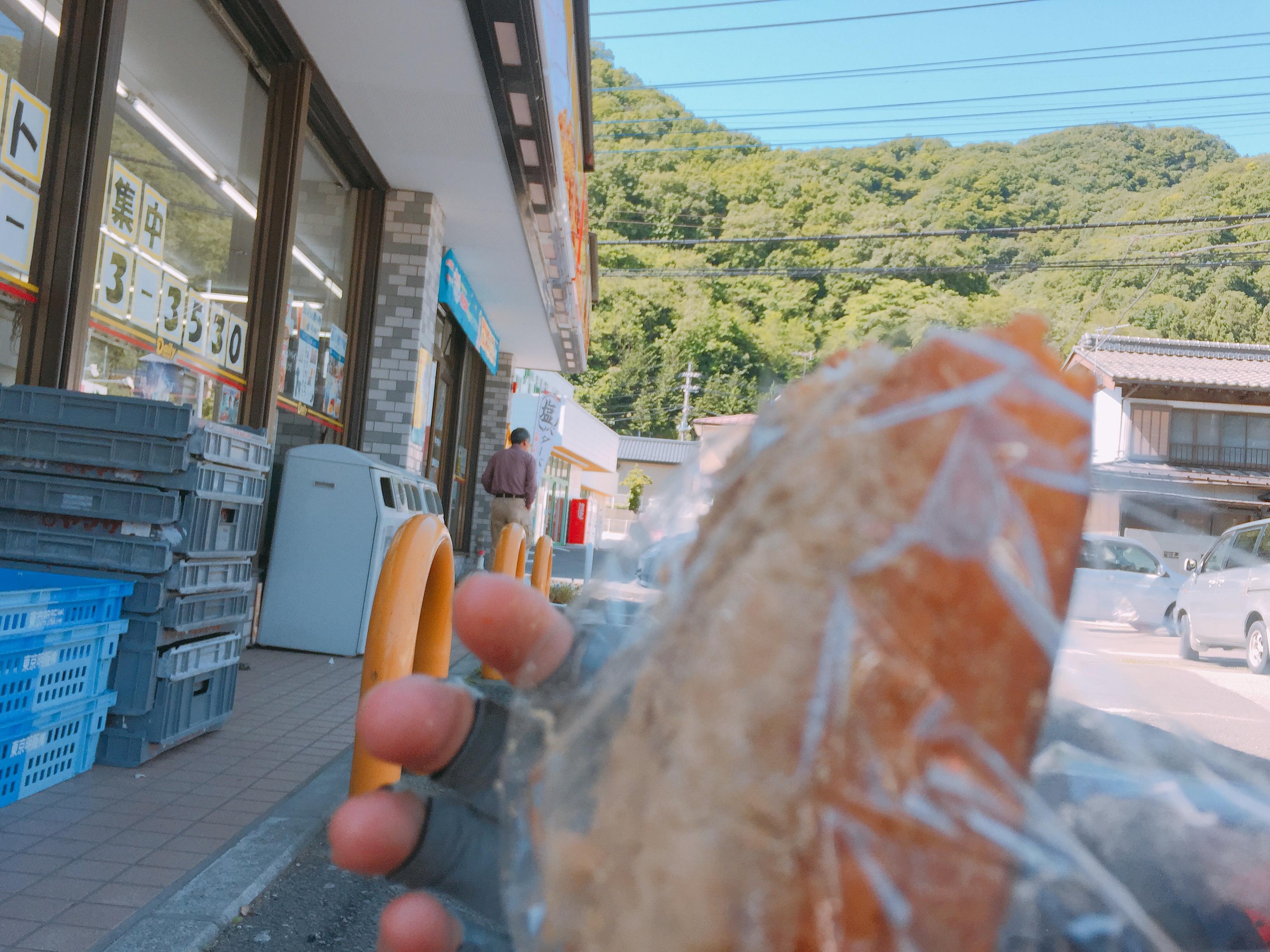 f:id:mfj_maap_jp:20170610174912j:image