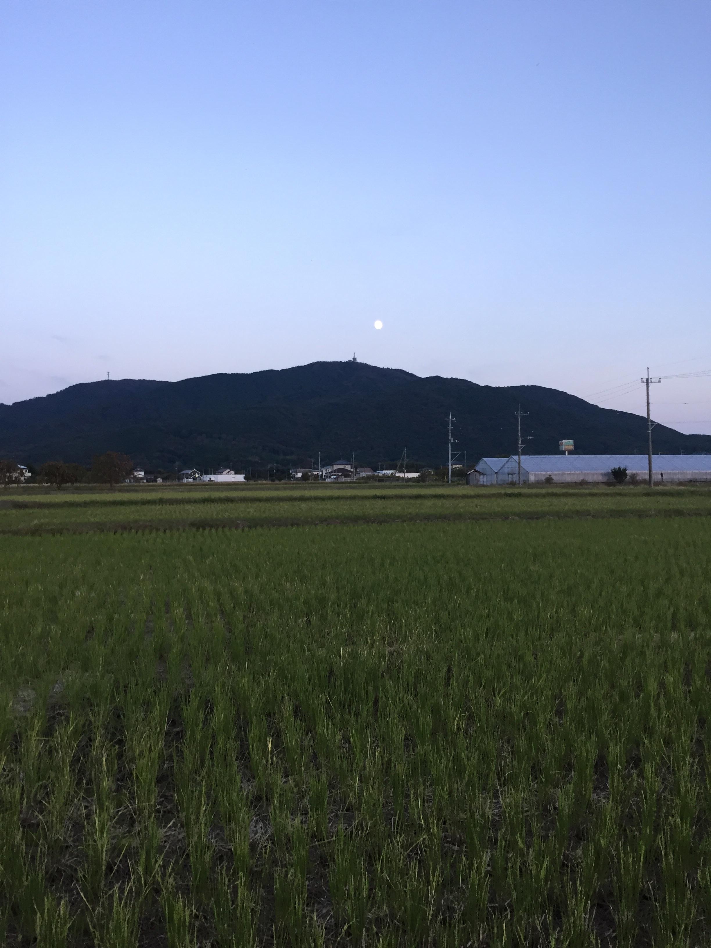 f:id:mfj_maap_jp:20181030154233j:image