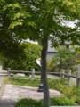20100430130647