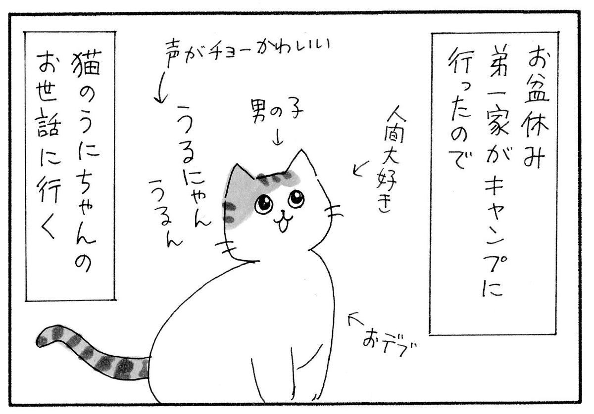 弟の猫のうにちゃんの紹介