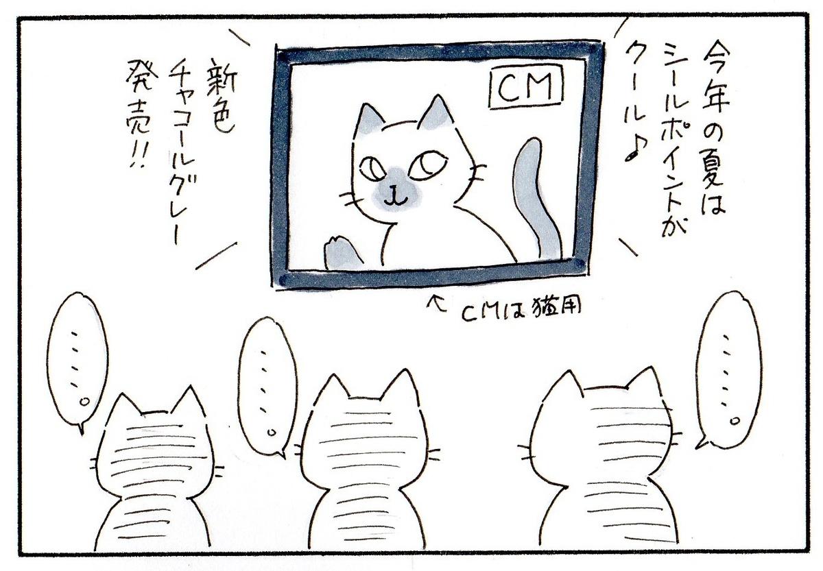 新しい毛皮のCMを見る猫たち