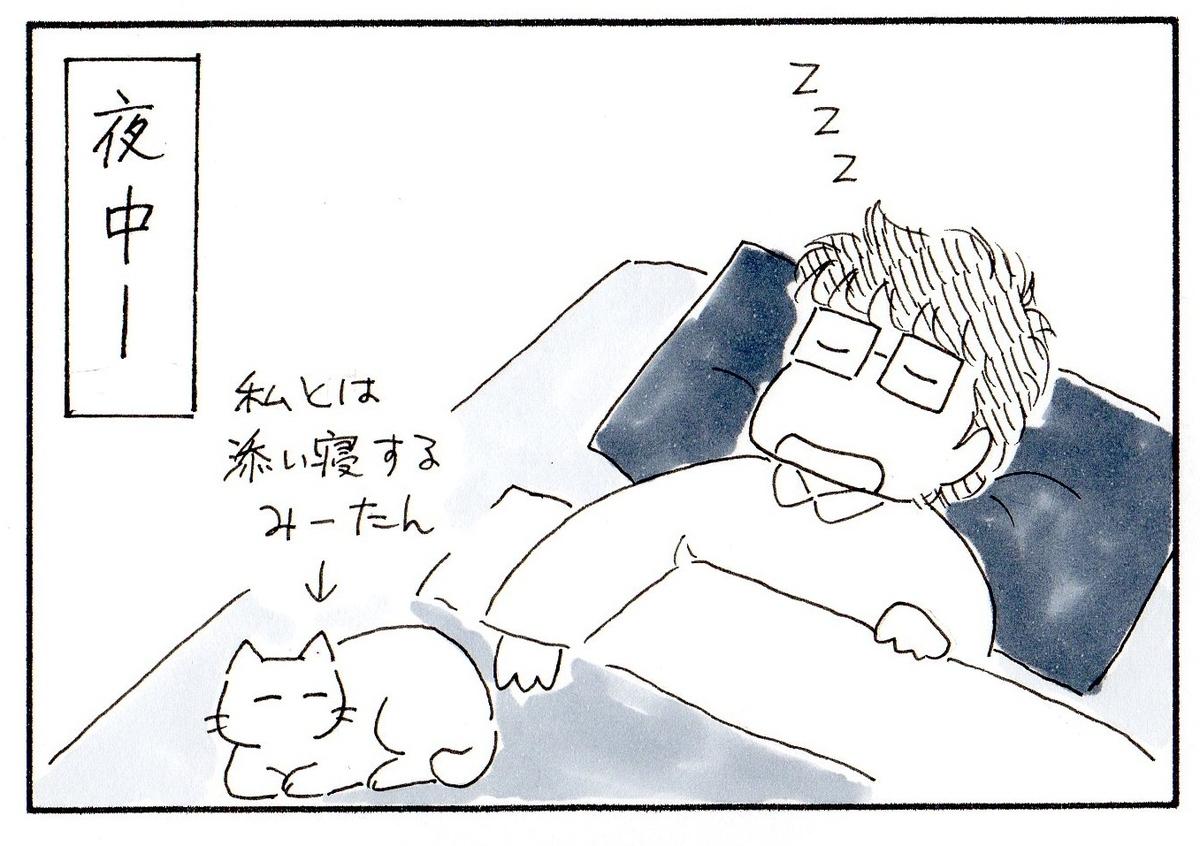 ベッドに寝る私と添い寝するみーたん