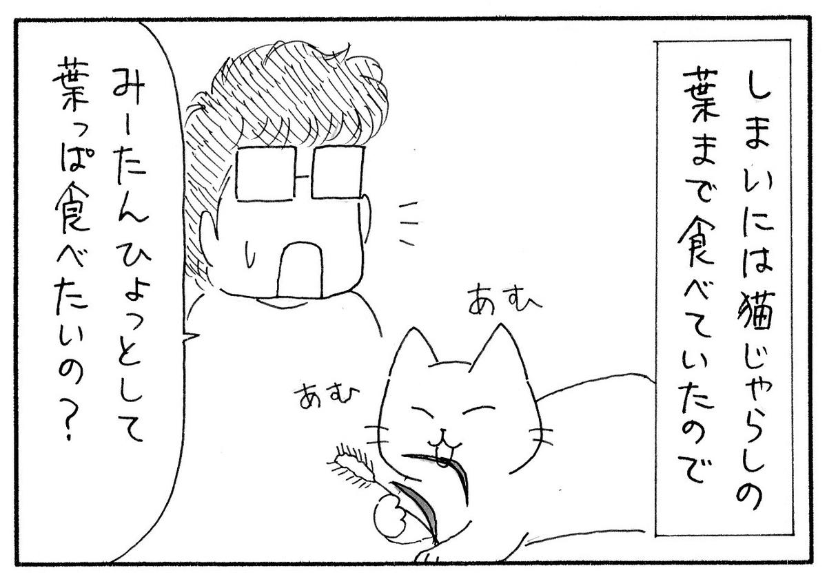 野生の猫じゃらしが好きすぎて葉っぱまで食べるみーたんと、それを見て葉っぱが食べたいの?と思う私。
