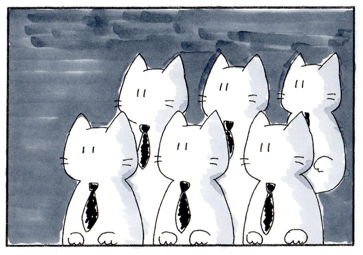 暗い部屋で何かを見つめて右を向く猫たち