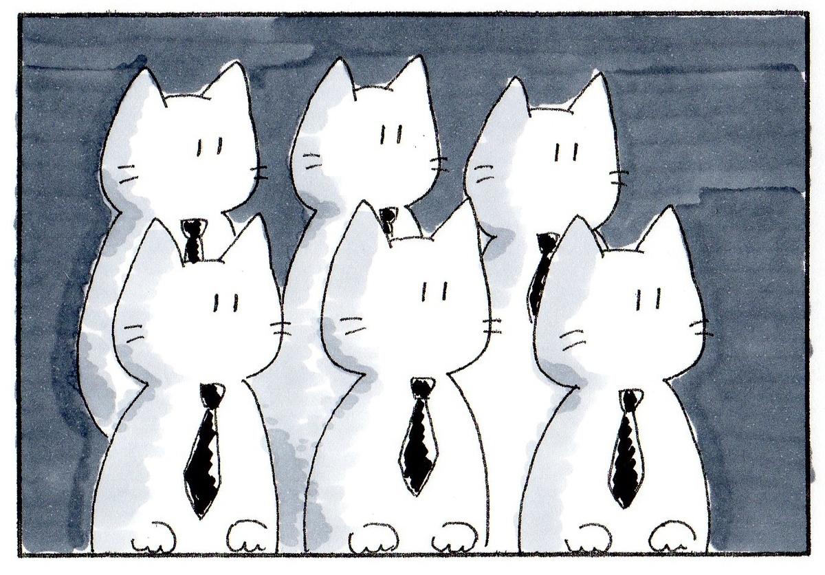 同じく何かを見つめて左を向く猫たち