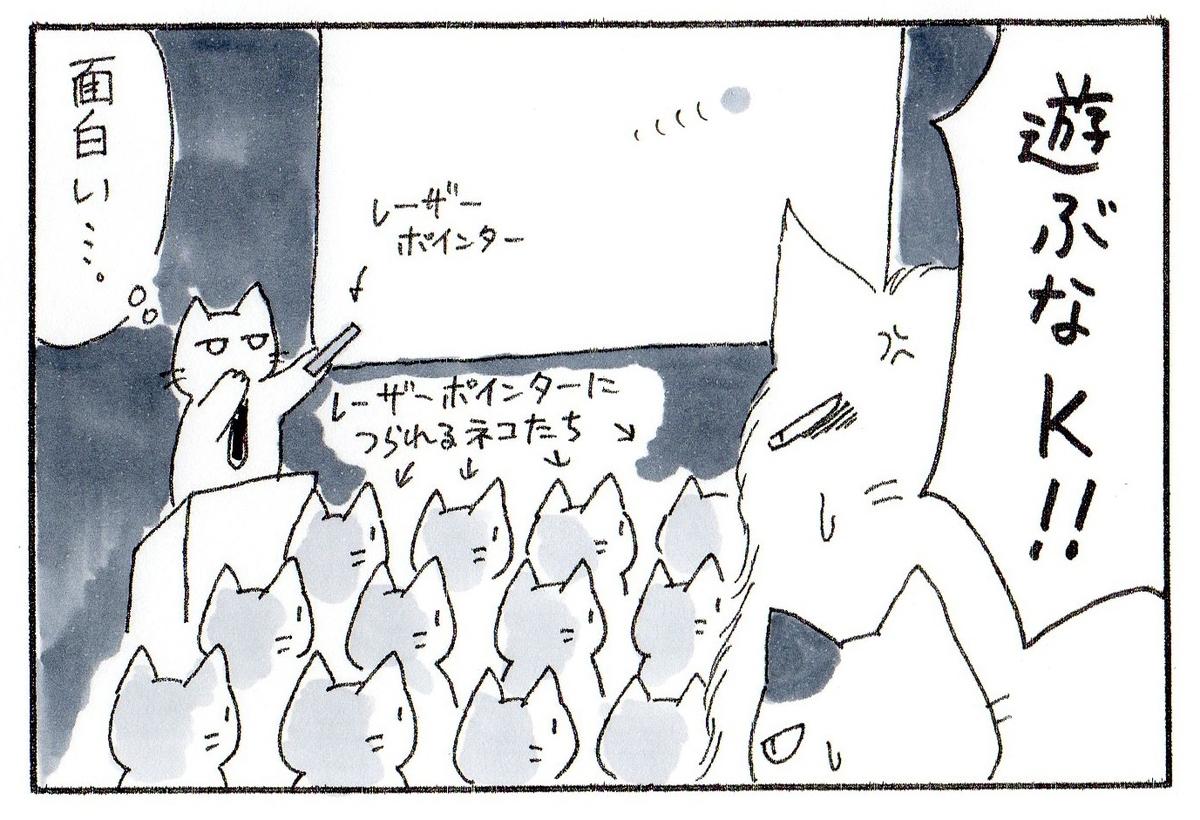 実はプレゼン中でひたすらレーザーポインターを追う猫たちと、ポインターを操って楽しんでるK