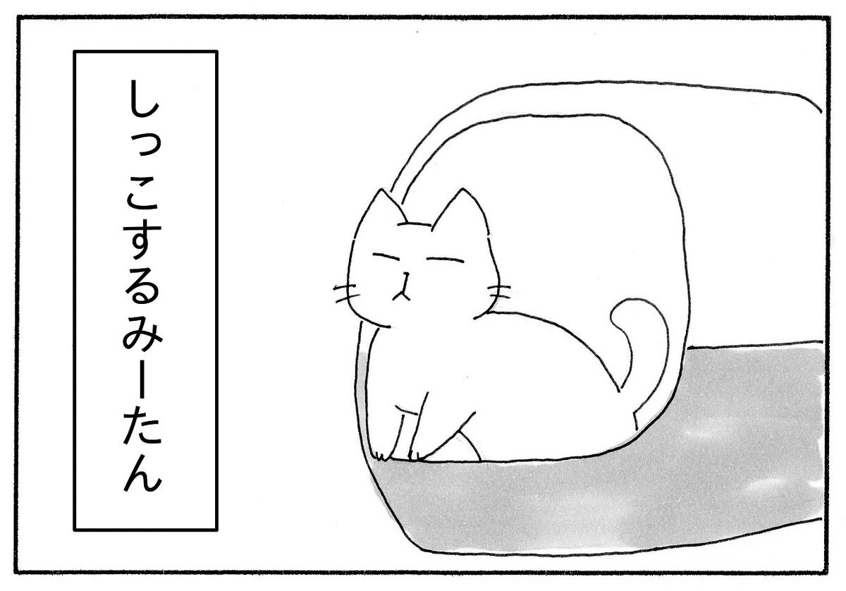 猫トイレでしっこするみーたん