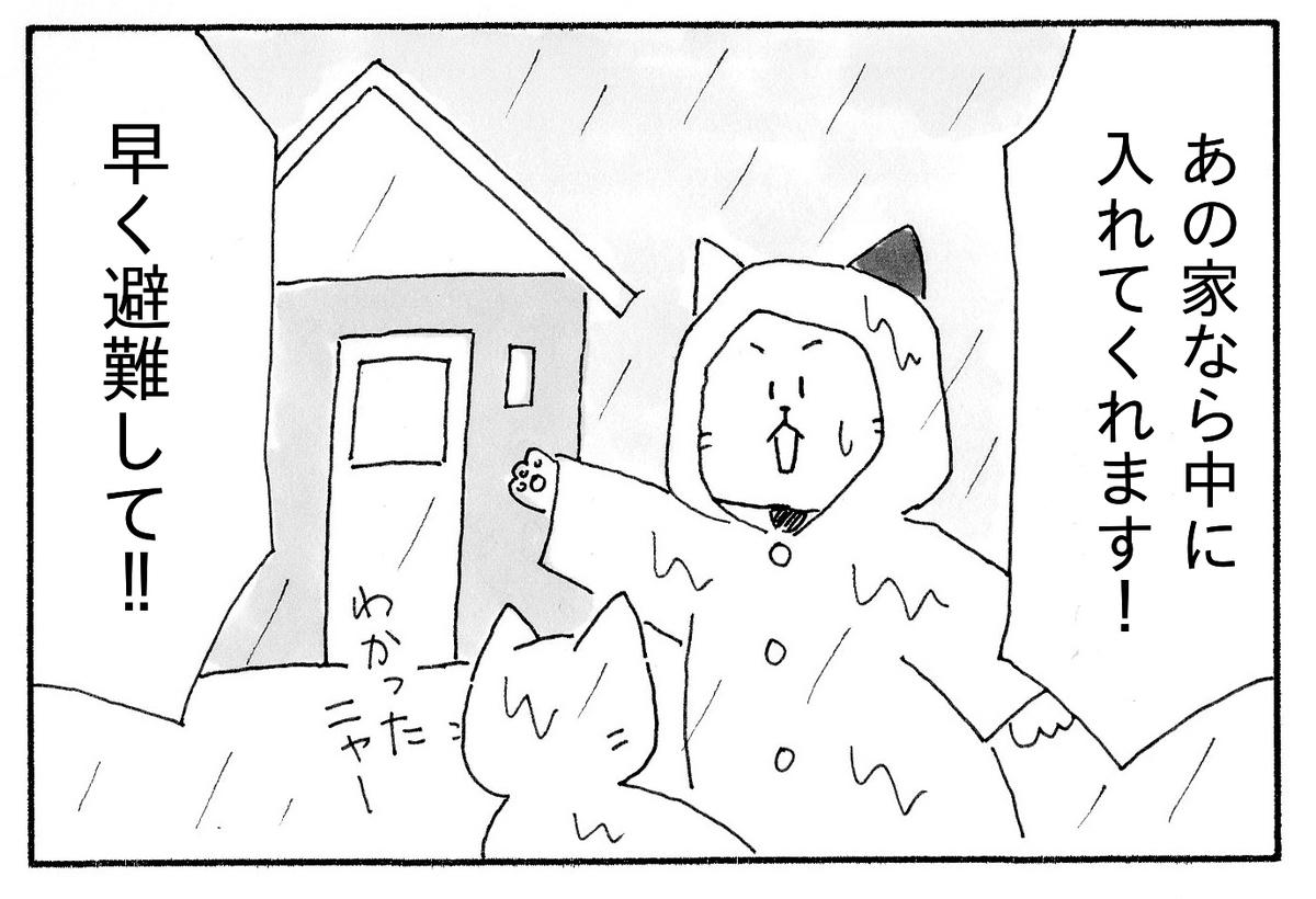 「あの家なら中に入れてくれます」と野良猫を避難させるJ