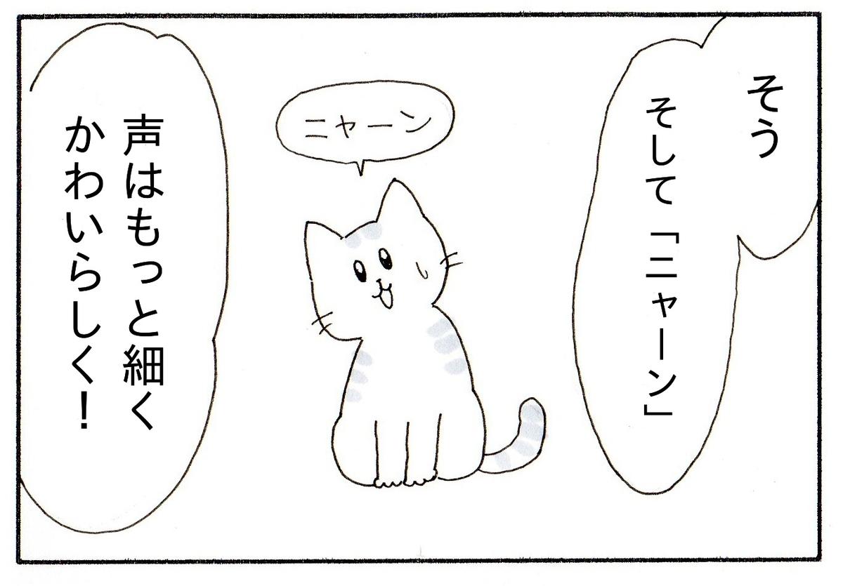エージェントMの指示に従って、首をかしげてニャーンとなく子猫
