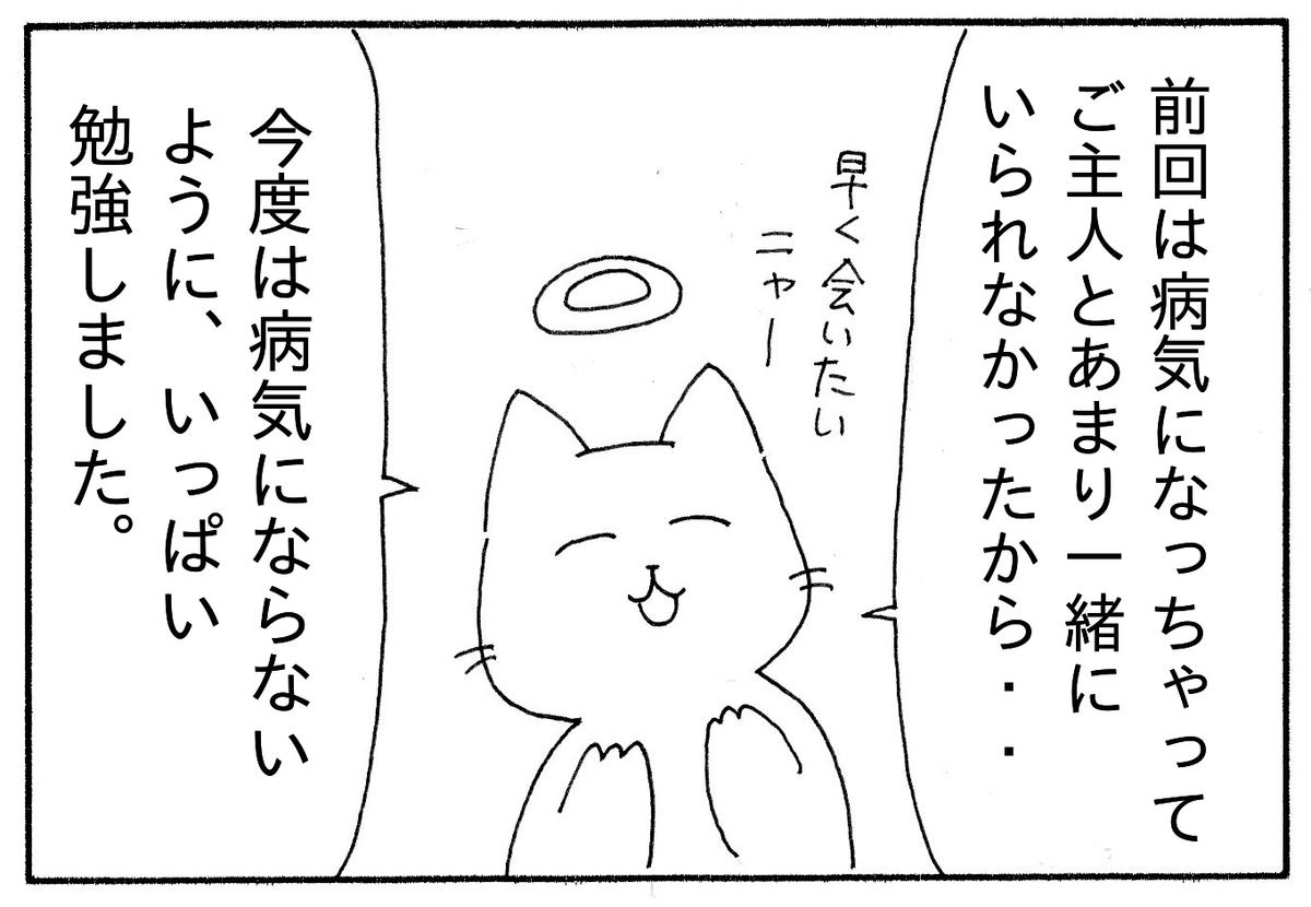 「前回は病気になってご主人とあまり一緒にいられなかったから、今度はいっぱい勉強したんです。と答える猫