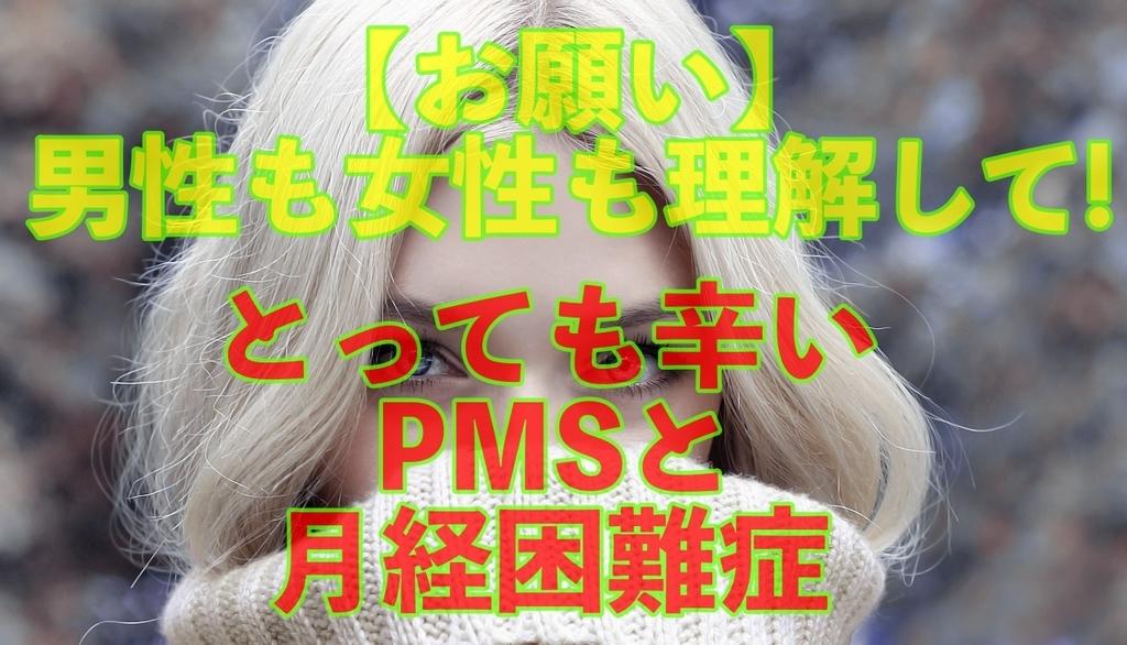 f:id:mhpone5s:20190131225151j:plain