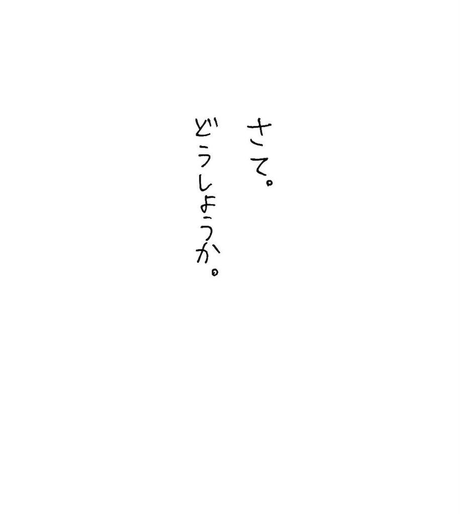 f:id:mi-anna:20161219234133j:image