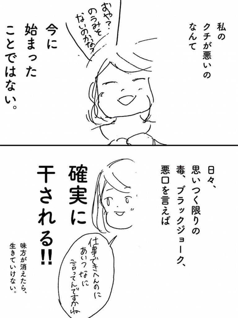 f:id:mi-anna:20170607224846j:image