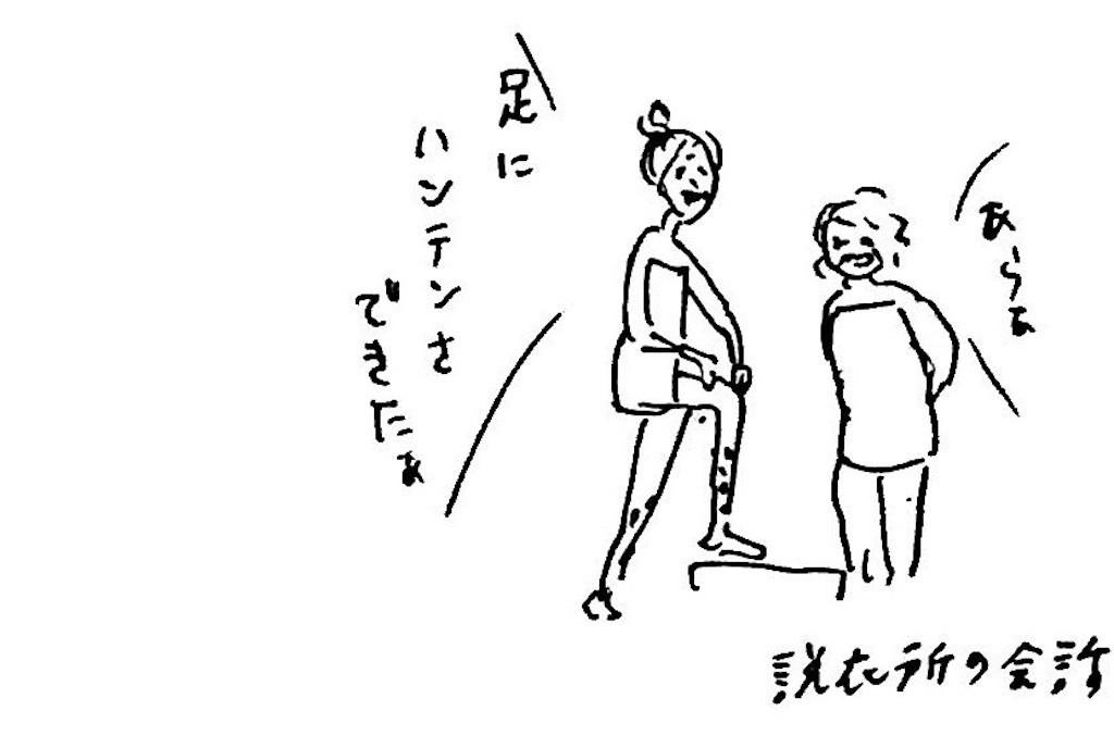 f:id:mi-anna:20171202235343j:image