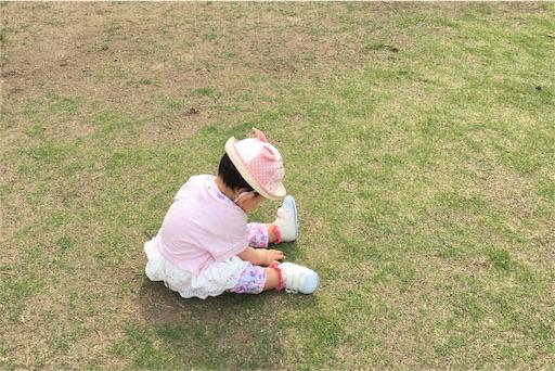 f:id:mi-chan37blog:20170516202918j:image