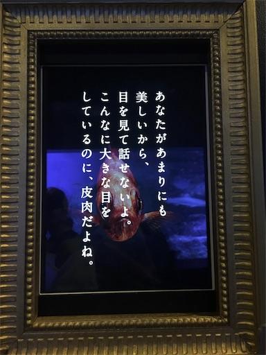 f:id:mi-chan37blog:20170731064735j:image
