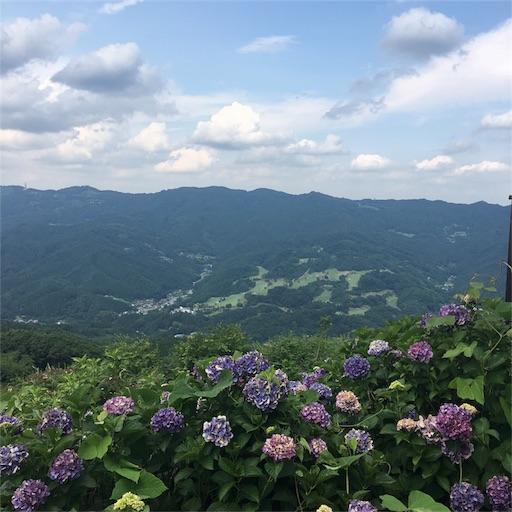 f:id:mi-chan37blog:20170731065347j:image