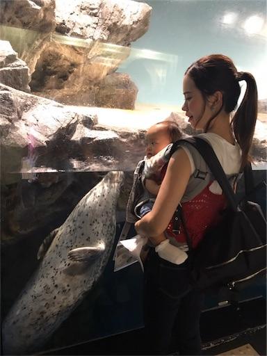 f:id:mi-chan37blog:20170731065931j:image