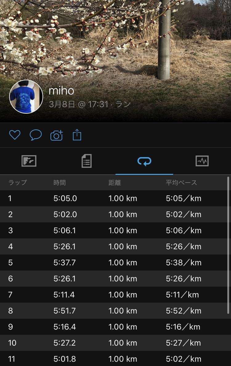 f:id:mi-taro1211:20200308212445j:plain