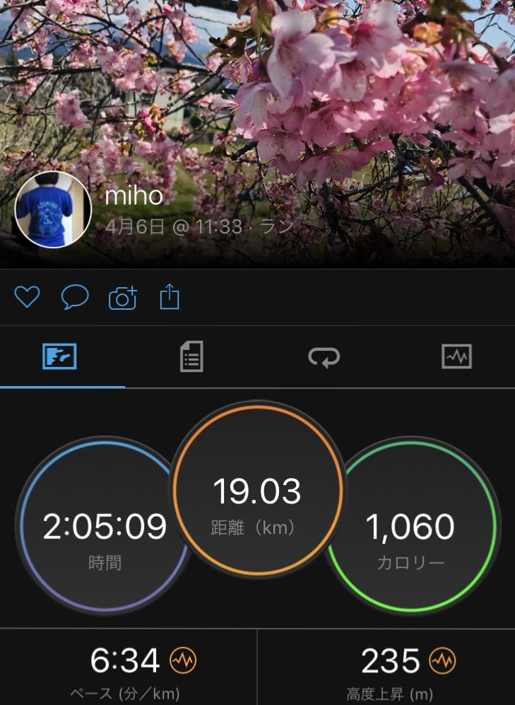 f:id:mi-taro1211:20200406183008j:plain