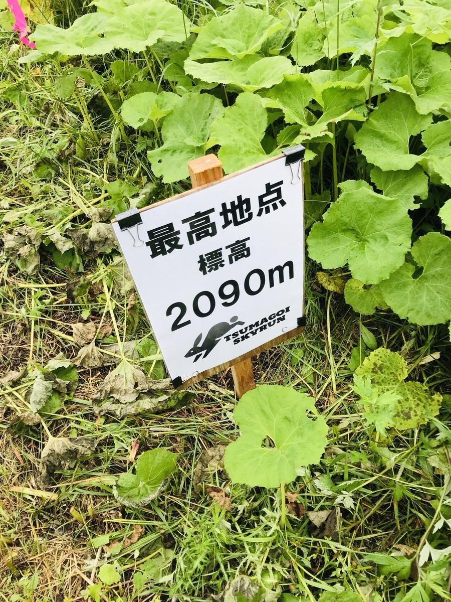 f:id:mi-taro1211:20200706185516j:plain