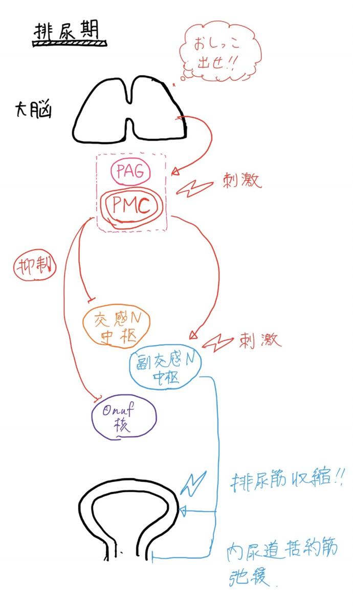 f:id:mi-wanko:20200503005641p:plain