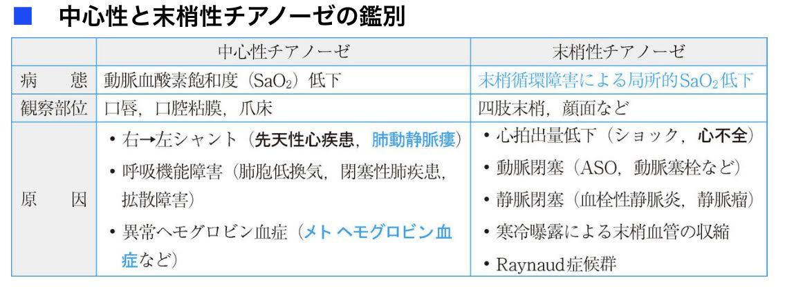 f:id:mi-wanko:20200525013142j:plain
