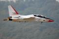 [Aircraft]T-50/09-034