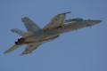 [Aircraft]VFA-122 F/A-18F NJ-117/165910