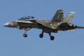 [Aircraft]F/A-18D 164203
