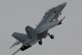 [Aircraft][FD10]VFA-102 F/A-18F NF-102/166917