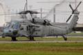 [Aircraft][FD10]HSC-25 MH-60S RB-03/166365