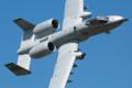 [Aircraft]51FW 25FS A-10A OS/81-0959