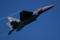 4FW 335FW F-15E SJ/87-0196