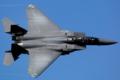 [Aircraft]4FW 335FW F-15E SJ/87-0196