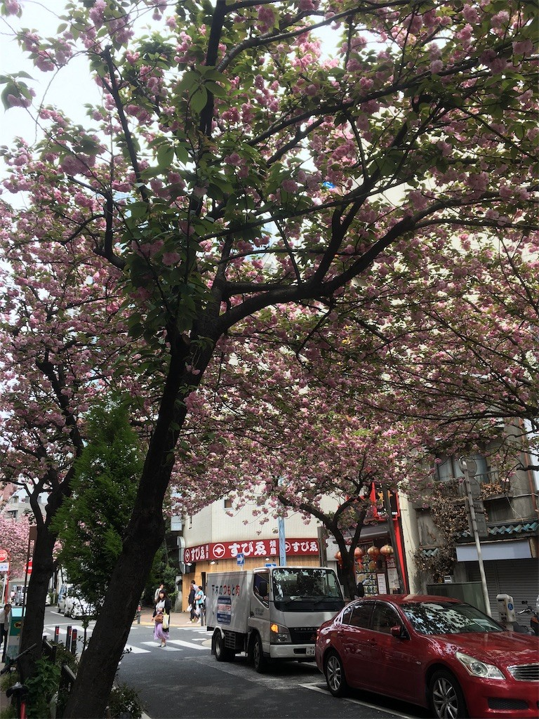 f:id:mia-nohara:20170421064112j:image