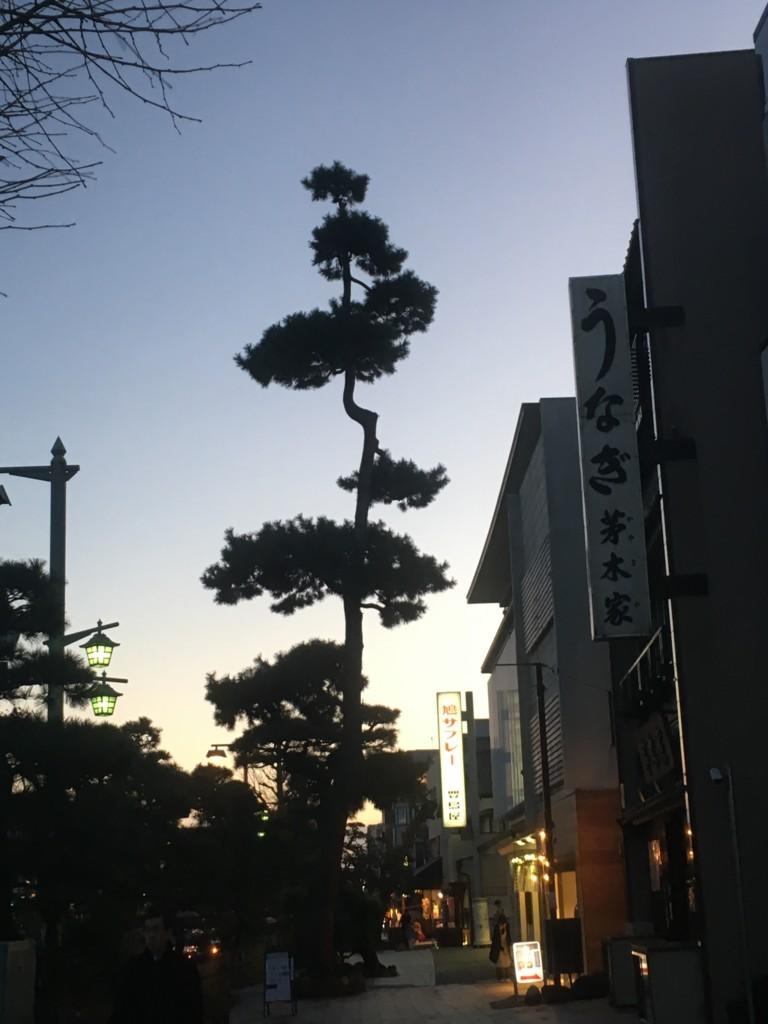 f:id:mia-nohara:20180109165851j:plain
