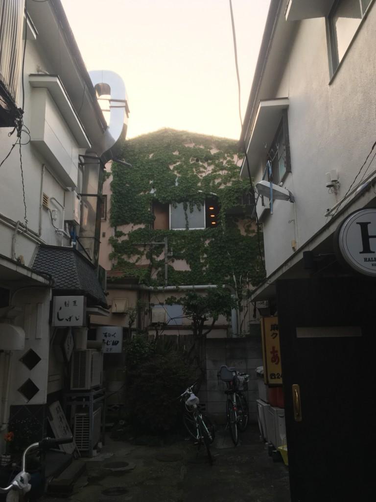f:id:mia-nohara:20180420175035j:plain