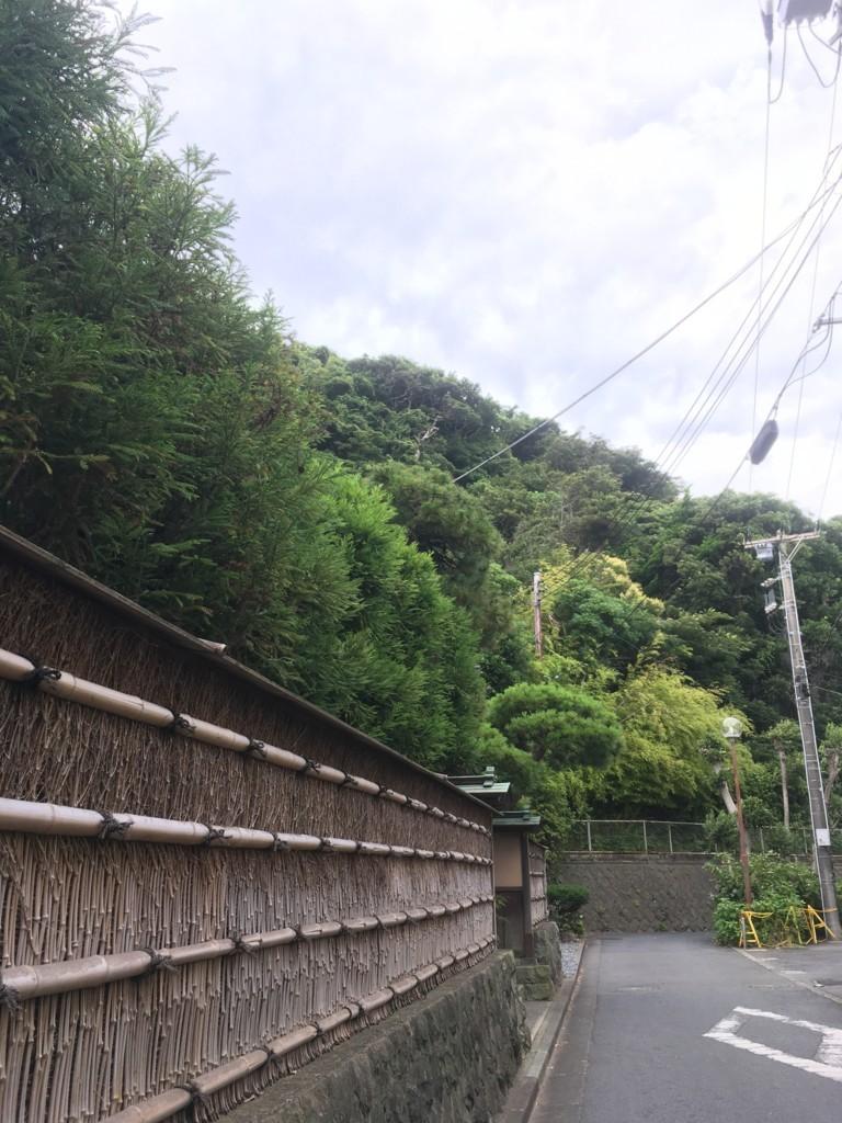 f:id:mia-nohara:20180705145448j:plain