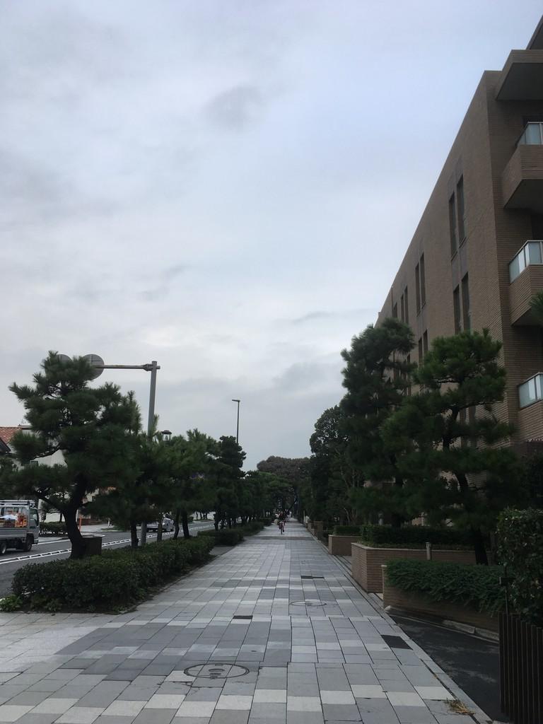 f:id:mia-nohara:20180915171113j:plain