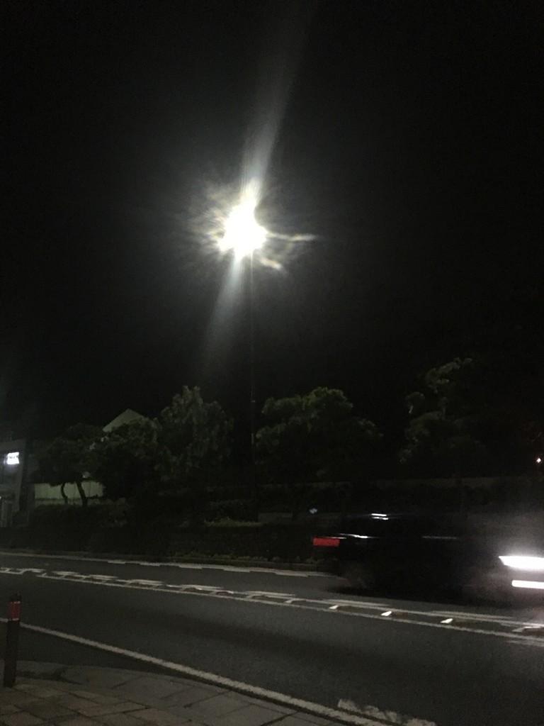 f:id:mia-nohara:20181105231045j:plain