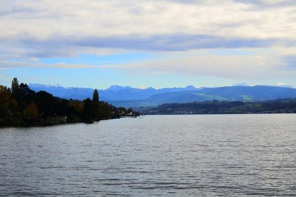 遊覧船からみえるスイスの山々