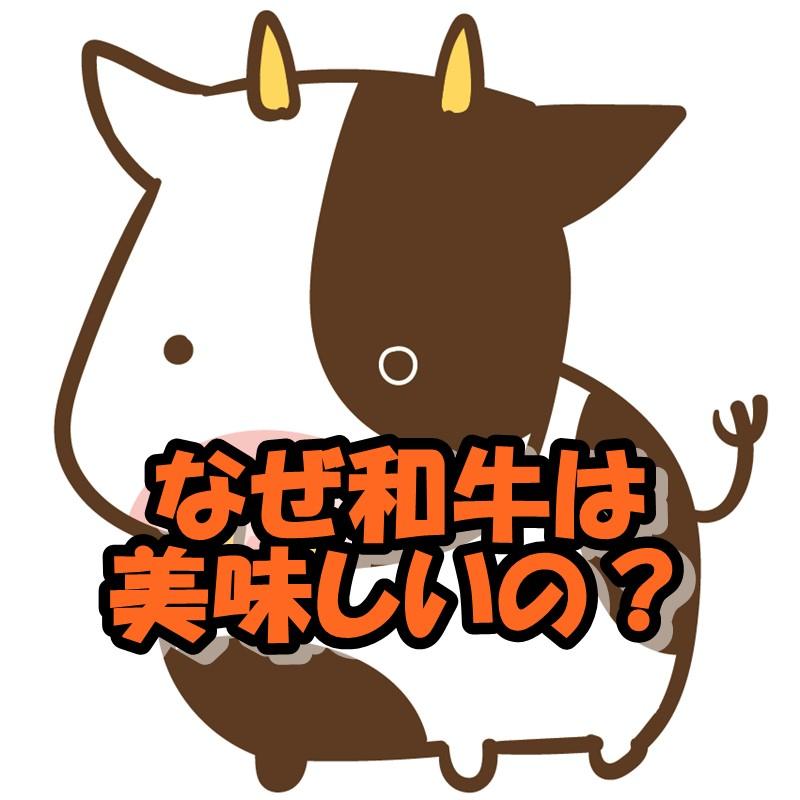 f:id:miaki322:20190512175001j:plain